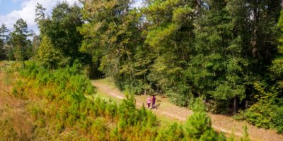 Miles of Trails in The Woodlands